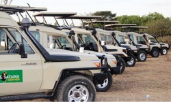 primate safaris -vehicles copy